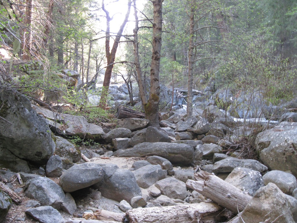 Making my way to the river included walking through this rocky patch.