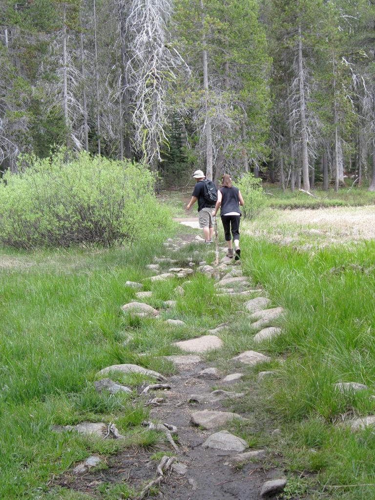 The muddy path near the footbridge.