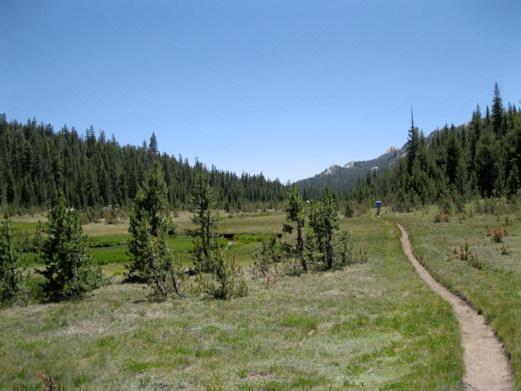 The trail through the long and narrow meadow.