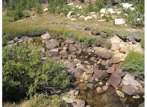 Unicorn Creek, 2010