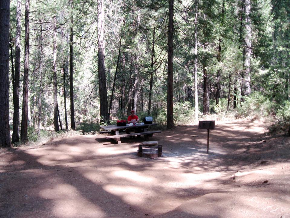 Jerseydale campsite amenities include fire pit, BBQ and picnic table.