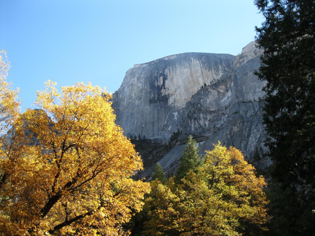 Looking up at Half Dome after the sun rose high in the sky.