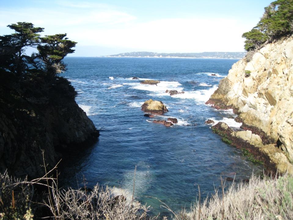 Cypress Cove