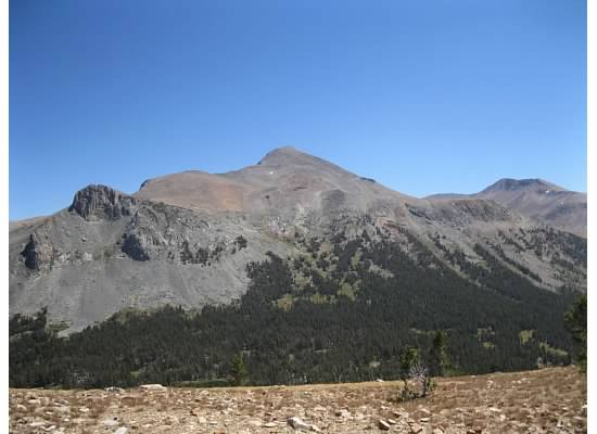 Mt. Dana