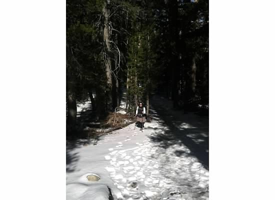 Hiking to Dog Lake.