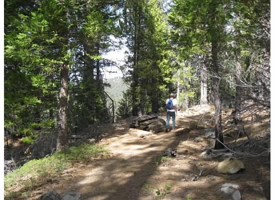 The location of the Yosemite Railroad.