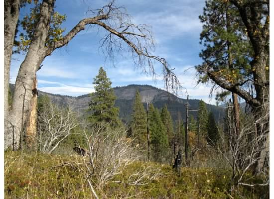 Wawona Dome from the trail.