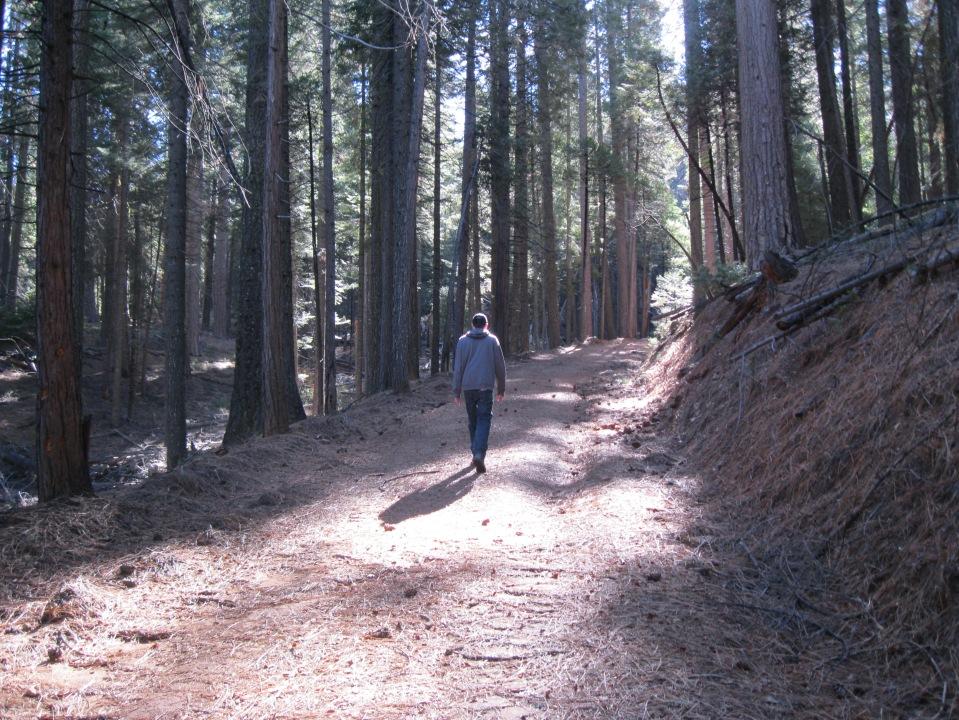 Chowchilla Mountain Road, a toll-free road into Yosemite.