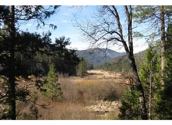 Wawona Meadow is dormant during this time of year.