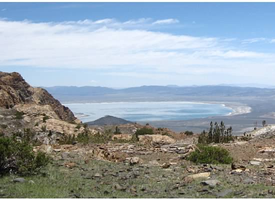 My view during lunch: Mono Lake.