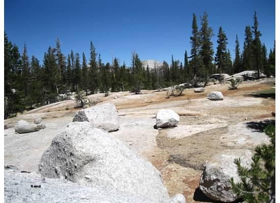 Glacier erratic encompassed the area.