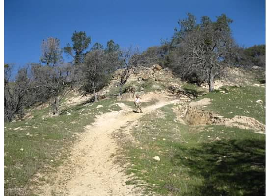 Corcoran Mine Trail. Here the path narrowed and became steep and rocky.