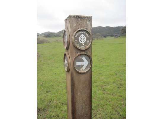 Trailhead sign post.