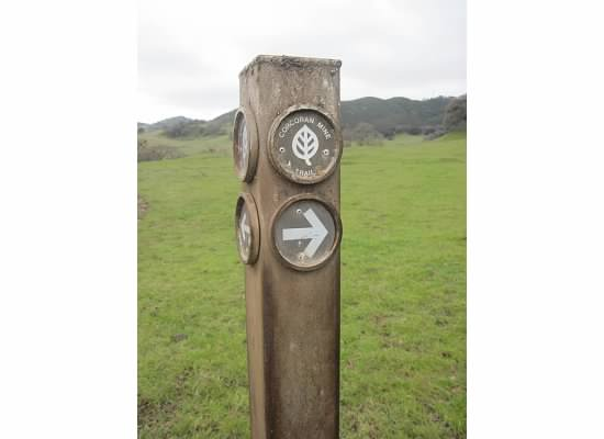 Trailhead sign post.