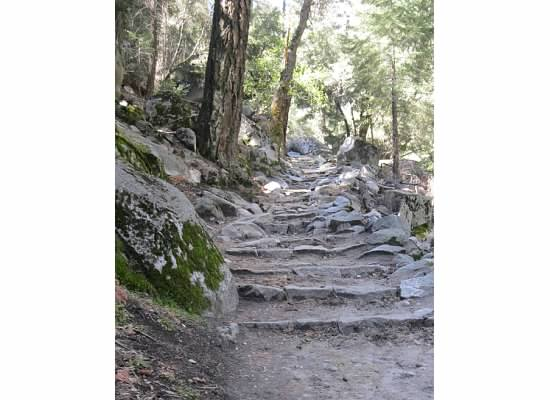 One of the many series of steps on the JMT.