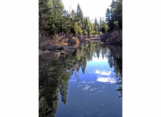 A reflection on the water. Stanislaus River.