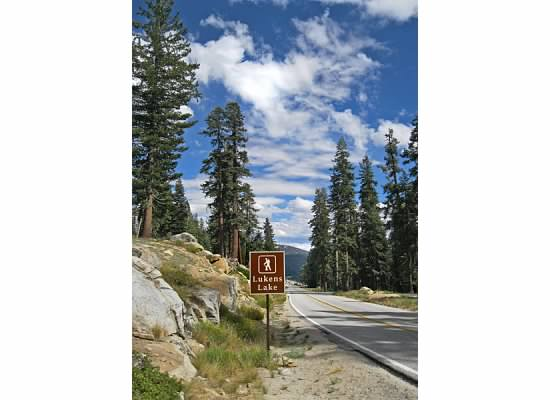 Trailhead on Tioga Road.