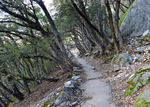 Yosemite National Park, Four Mile Trail
