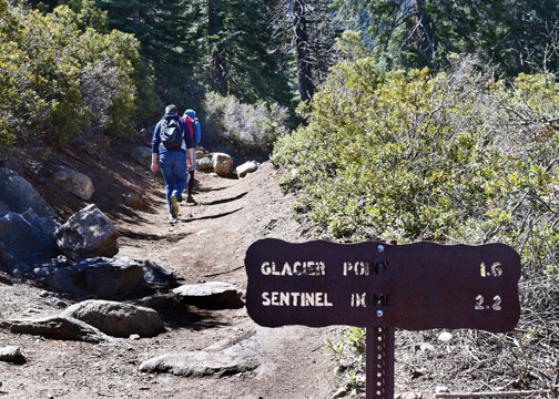 Four Mile Trail, Glacier Point, Yosemite
