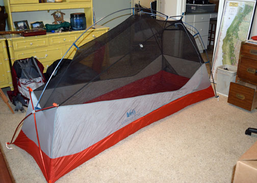 The new REI Quarter Dome single-person tent.