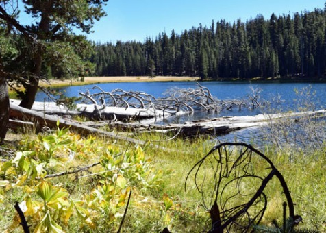 Yosemite National Park, Lukens Lake