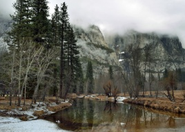 Merced River in the morning.
